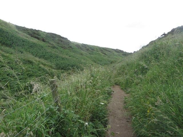 Footpath in Holmes Gut