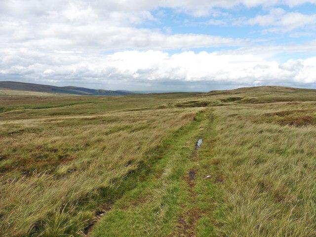 Track on Axe Edge Moor