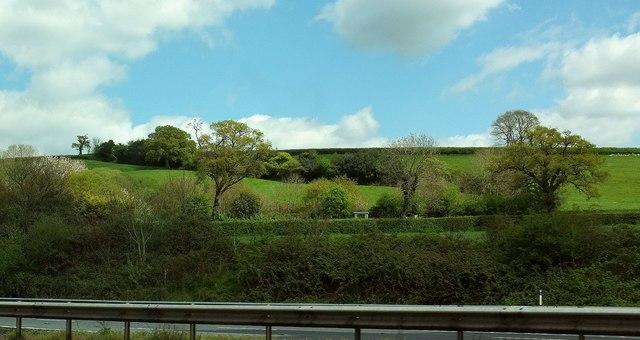 Hillside above the M5
