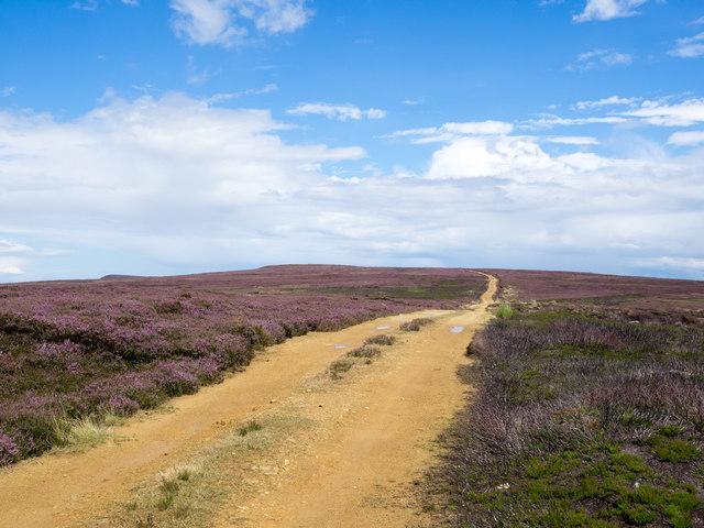 Estate road climbing on Whorlton Moor