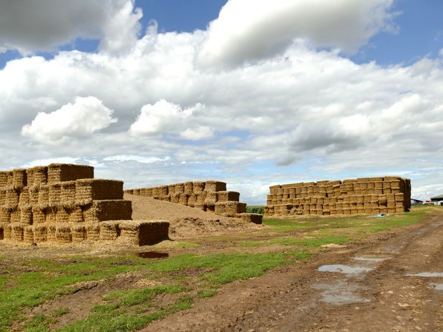 Hay bales and cattle feed