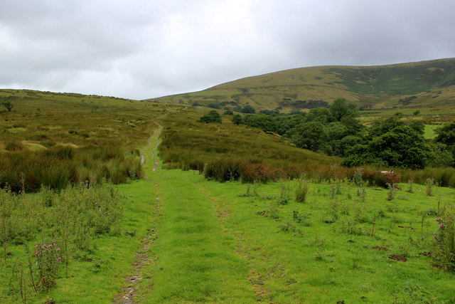 Grass Track leading away from Lickhurst Farm