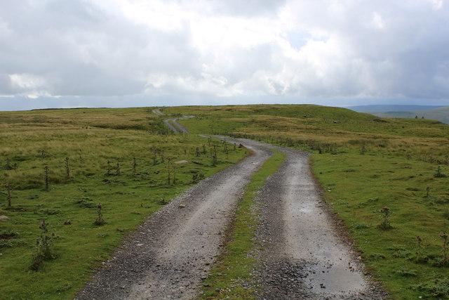 Track on the Edge of Abbotside Common