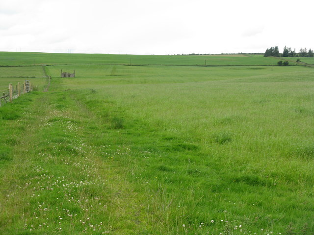 Field near Nether Falla