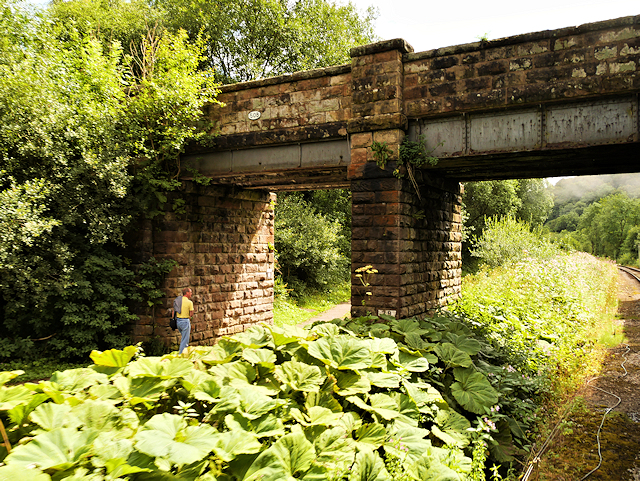 Caldon Canal, Podmore Bridge (Bridge#50B)