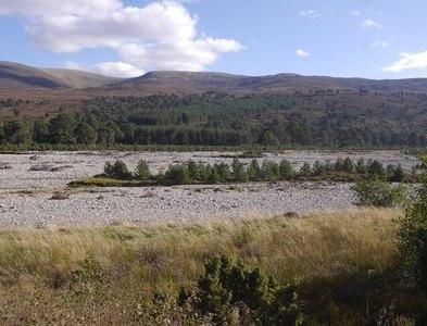 NN8493 : Flood bed, River Feshie by Richard Webb