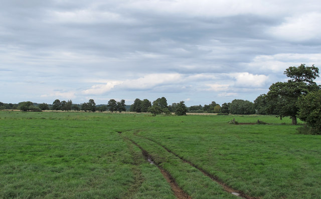 Pasture near Watch House Hill, Mettingham