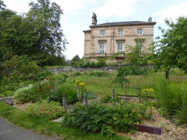 Historic beds in Glasgow Botanic Garden