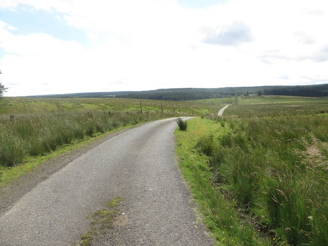 Country road at Hare Law