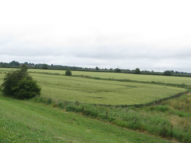 Arable land north of Tickton Hall