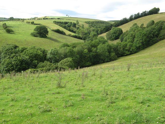 Valley above Bergam