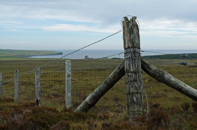 Fence on moorland to the east of Stroupster, Caithness