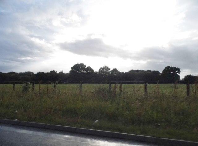 Field by Baydon Road