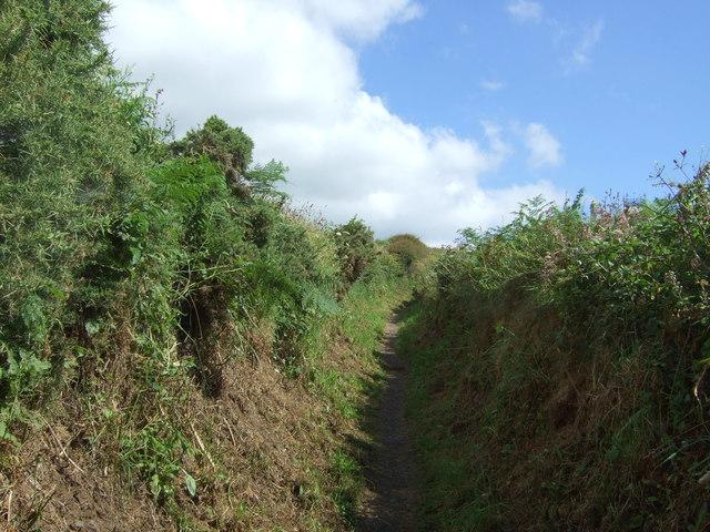 Track (bridleway) towards Lizard