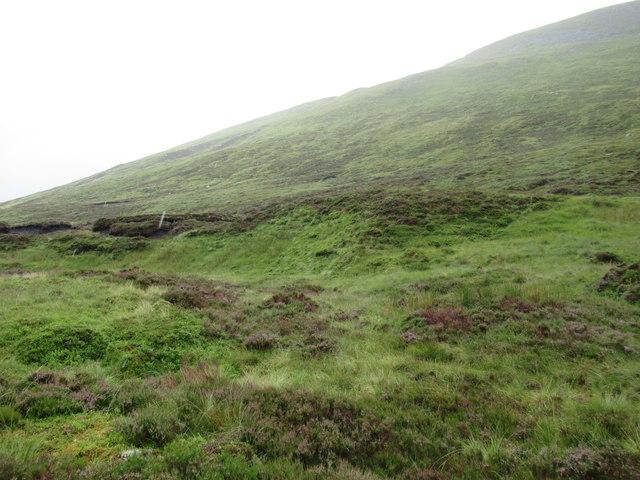 Slopes of Sron a' Choire near Loch Laggan