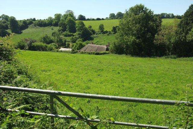Thatched cottage, Stoke Abbott