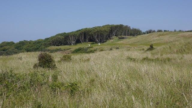 Archerfield from West Links