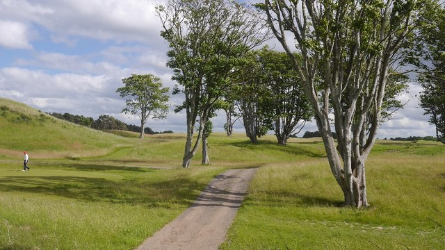 Road, Archerfield