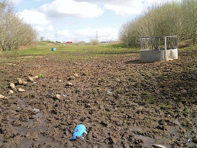 Former landfill site (Duranhill South Sidings)