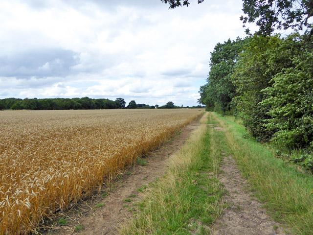 Footpath north from Apton Hall Farm