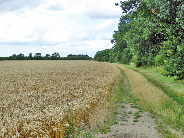 Footpath north from Apton Hall Farm