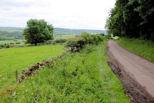 Lane Near Lower Cowden Farm