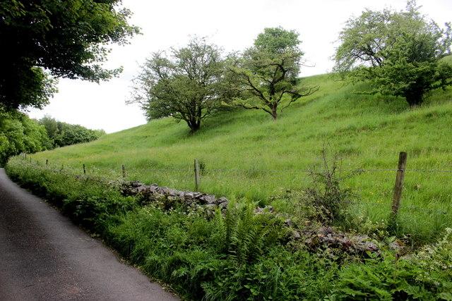Hillside in Kirk Dale