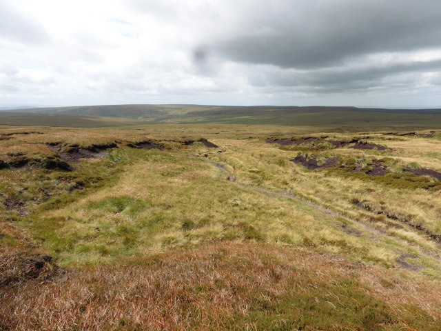 View towards Featherbed Moss