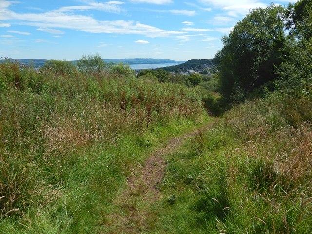 Path in Auchmountain Glen