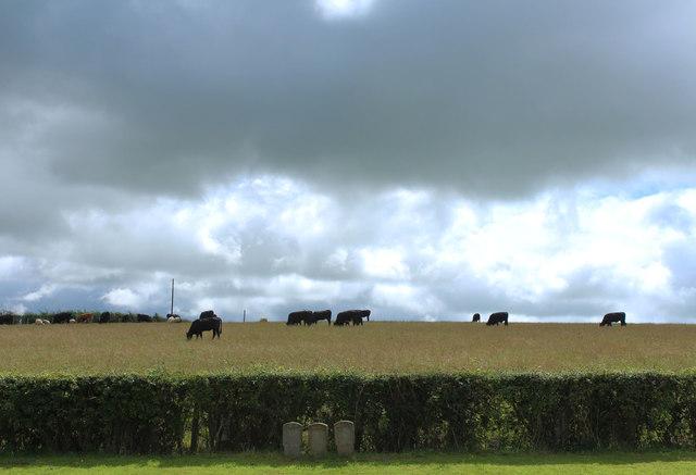 Farmland near Hoodston