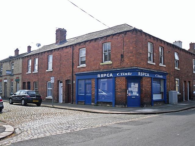 RSPCA Clinic, Close Street