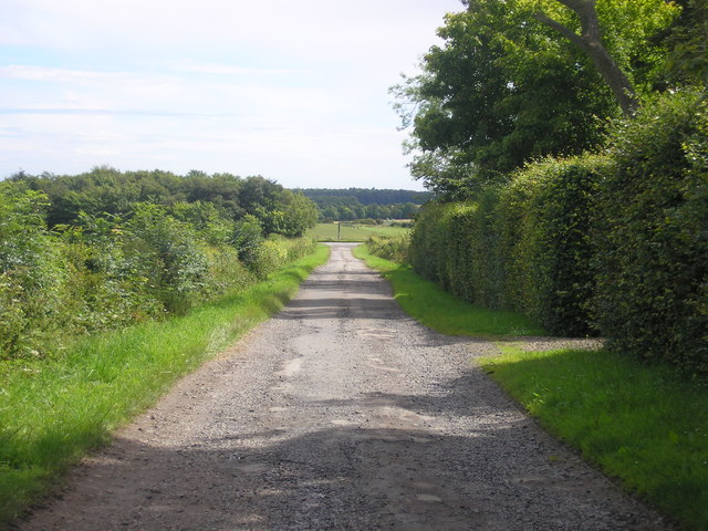 The road to/from Cameron