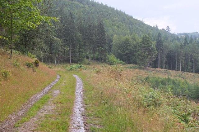 Duchess's Drive, Bowhill