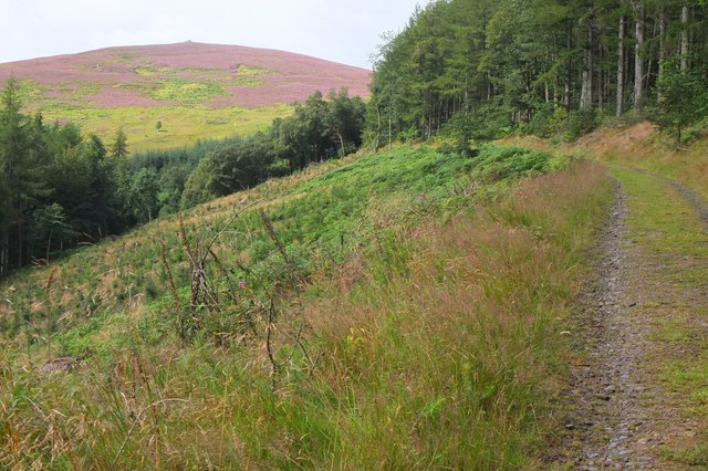 Fauldshope Hill from Bowhill Estate