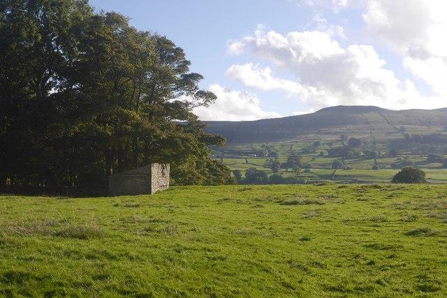 Wensleydale pasture