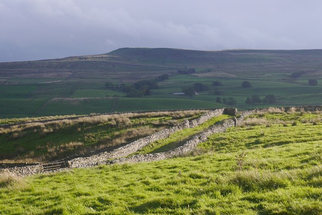 Walled track, Wensleydale