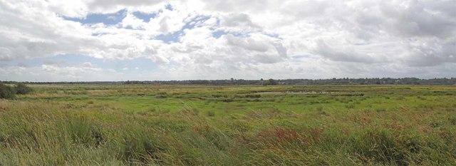 Stour Estuary Nature Reserve