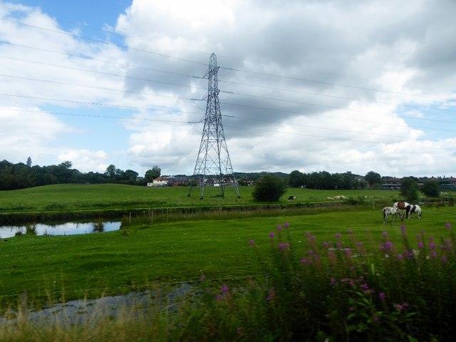 Pasture near Heywood