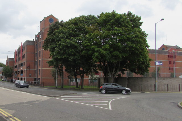 Trees on a Worcester corner