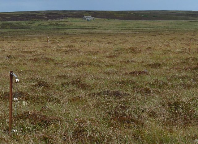 Fence posts on moorland below Craig Hill, Caithness