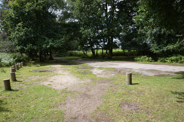 Junction of paths in Skipwith Common