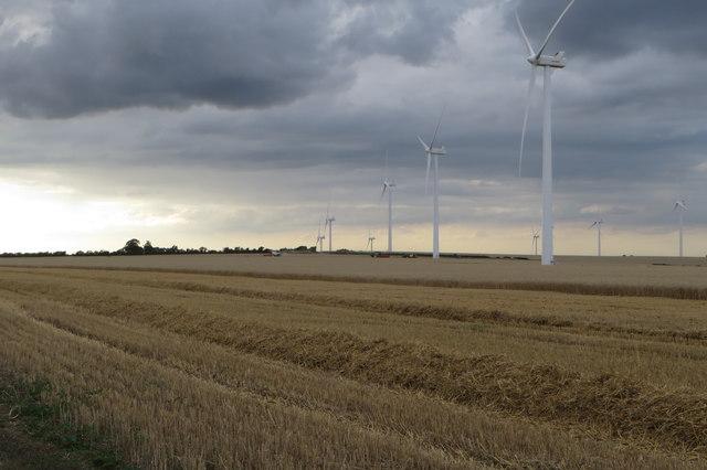 Harvesting under the turbines