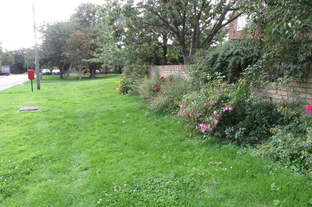 Garden overspill on the high street