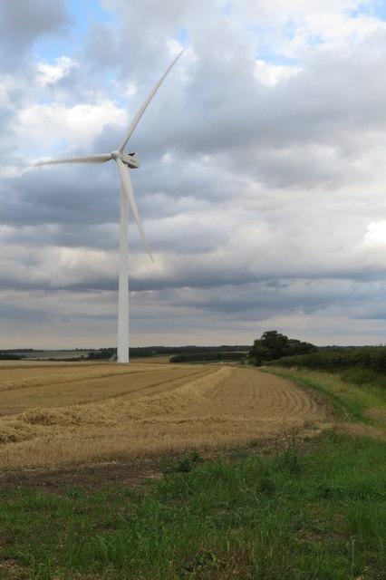 Wind turbine in a wheatfield
