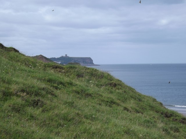 Descending the cliffs into Cayton Bay