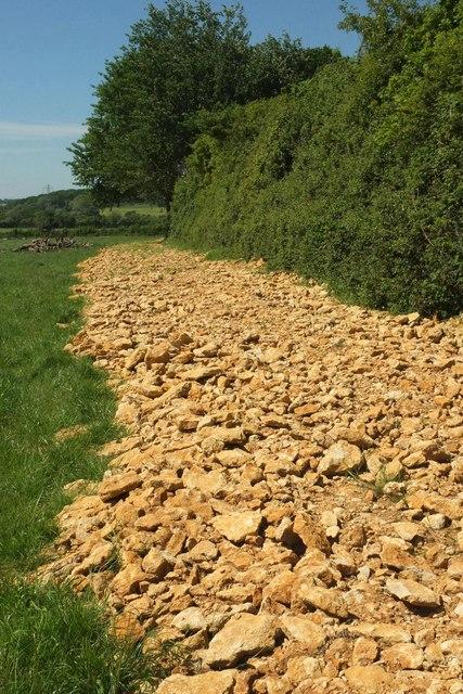 Stony track near Wood Dairy Farm