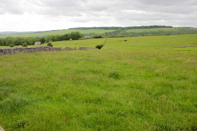 Countryside near Mandale House