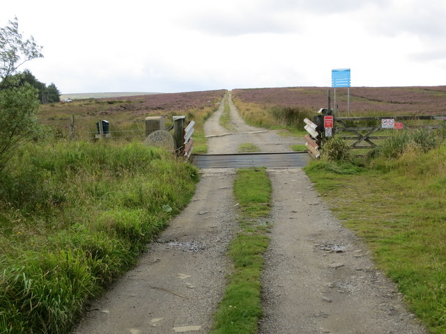 Track to Haworth Moor and Harbour Lodge crossing Cattle Grid