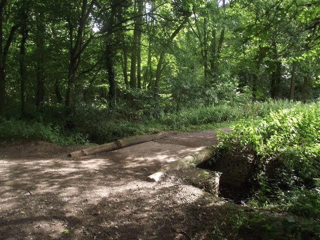 Footbridge in Burbage Wood