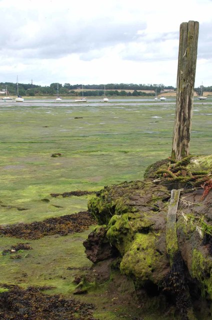 Mudflats & Mooring Post